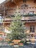 Tiroler Garten mit Christbaum