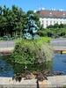 Volksgartenbrunnen mit Enten