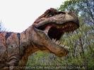 Dangerous T. Rex