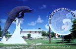 Dolphin Research Center 01