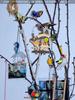 Birdlife 7