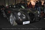 Beauties and Beasts 20 - Jaguar