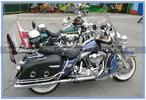 Harley Duo