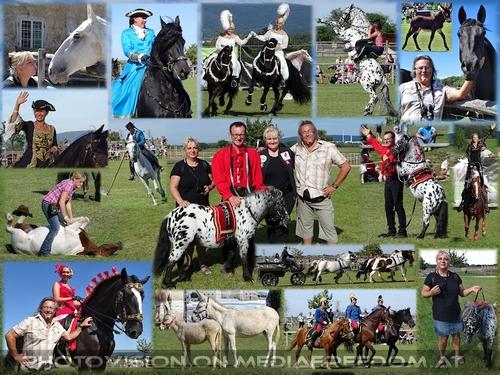 Das große Pferdefest: Barbara Fiona Simon mit Moments in Black, Katharina Schneidhofer mit ihren Crazy Showhorses