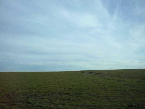 Der Horizont