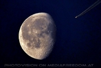 Mondsüchtiger Flieger