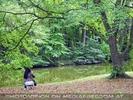 Im Park 09
