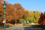 Herbstliche Stimmung