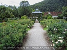 Im historischen Garten 1