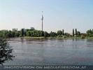 Blick zum Donauturm