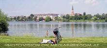 Blick zur Donaufelder Kirche