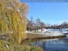 Kurpark Teich