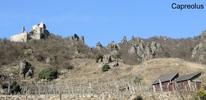 Ruine Dürnstein, interessante Steinformationen