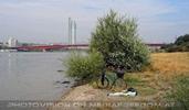 Am Donaustrand 1