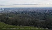 Blick auf Wien 2