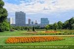 City und Park