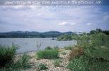 Donauinsel mit Donaubrücken