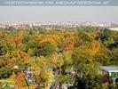 Tiegarten und Wien