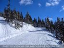 Schnee Park 32