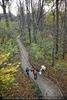 Blick vom Baumkronenweg