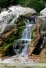 Wasserfall im Pinguingehege