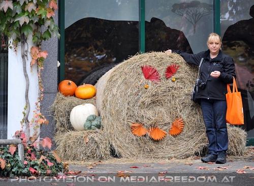 Herbst im Zoo 6: Gabriele P.