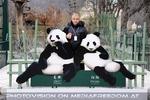 Bei den großen Pandas