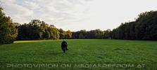 Im Schlosspark 23