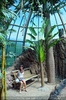 Im Zoo 03