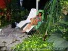 Jungle feeling 2
