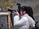 Roter Panda 5 Shooting
