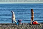 Der lange Strand 29