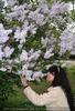 Blüten schnuppern