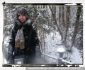 Noch ein Reh im Schnee