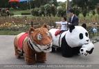 Tiger und Panda reiten