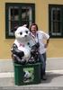 Die großen Pandas 1