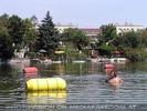 In der alten Donau