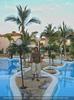 Palmen und Pools