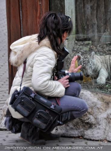 Weiße Tiger Kindergarten 35: Eva D.