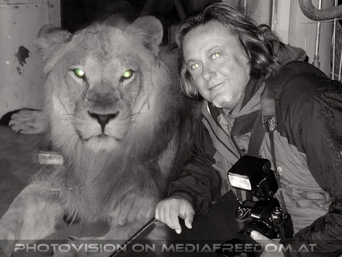 Afrikanische Löwen 11: Charly Swoboda