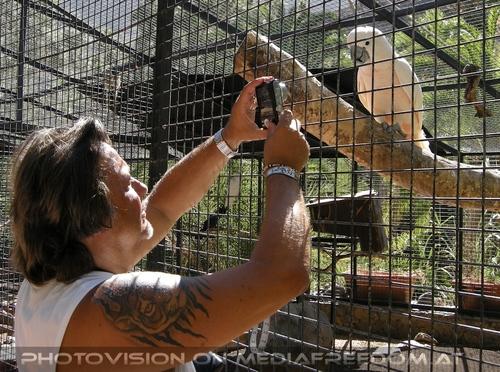 Parrots Park 14: Charly Swoboda
