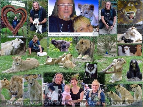 Löwenstarke Familiensafari: Gabriele P., Charly Swoboda, Natascha S.