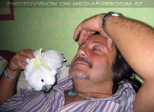 Blue-eyed lullaby 30: Elvis der Kakadu,Charly Swoboda