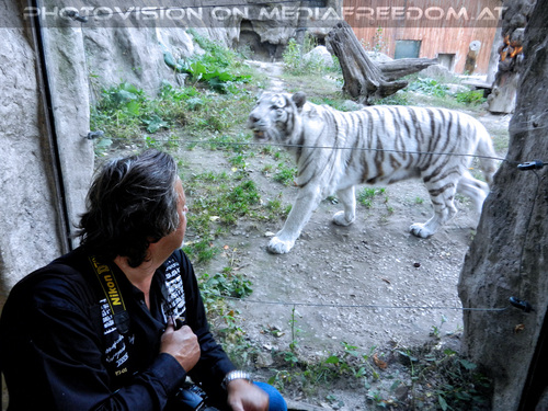 Weiße Tiger 19: Charly Swoboda