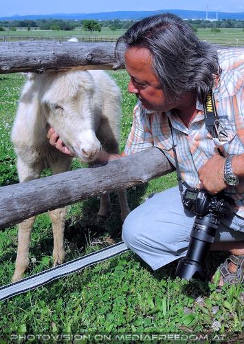 Mit weißen Esel 10: Charly Swoboda