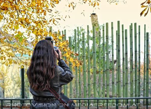 Fu Hu Fotomodel: Eva D.
