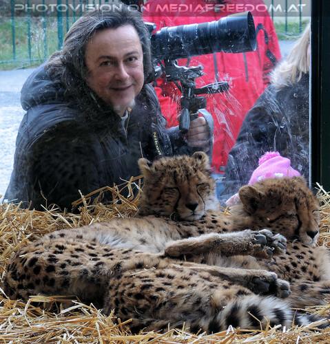 Geparden 05: Charly Swoboda