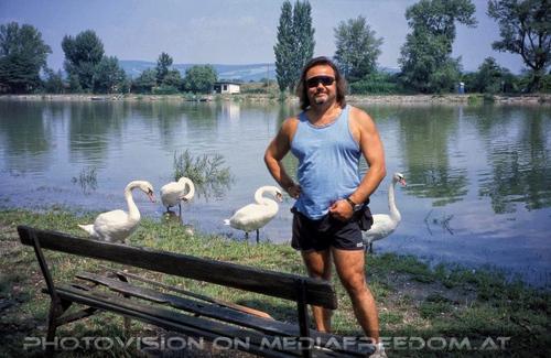 Die Überschwemmung 02: Charly Swoboda,Schwäne