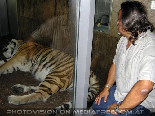Tiger Wächter: Charly Swoboda