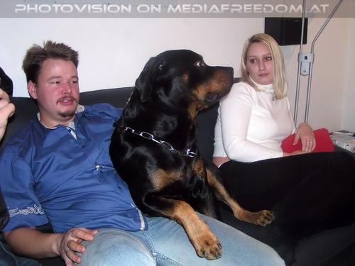 Freistil Party 9: Tommy  ,Hobi,Dani